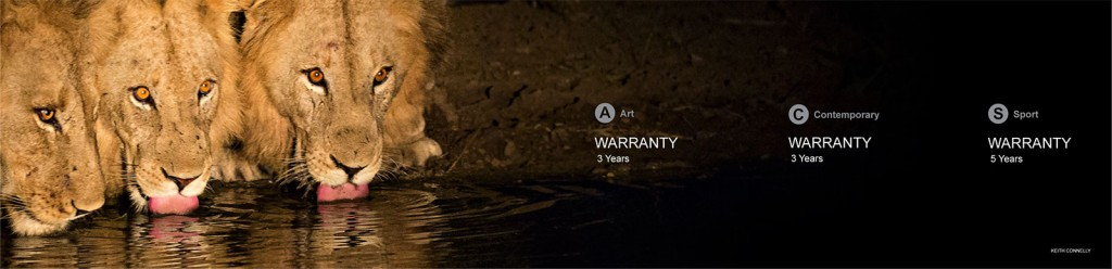 Warranty 3 Years | Art | Contemporary | Sport