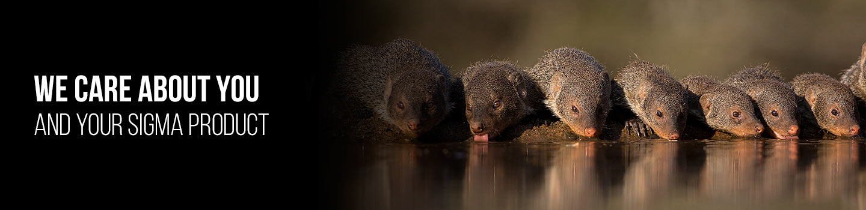 ©Henri Venter